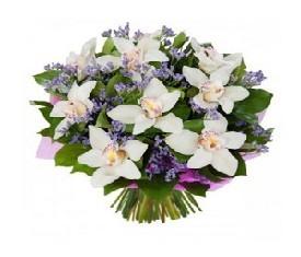 белые орхидеи и зелень