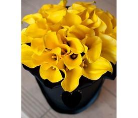 29 желтых калл в шляпной коробке