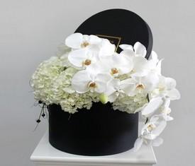 Гортензия и орхидея фаленопсис в шляпной коробке