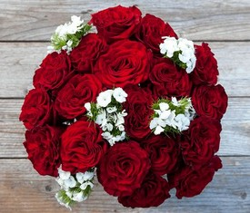 19 красных пионовидных роз