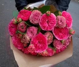 букет из 19 малиновых пионовидных роз заказать