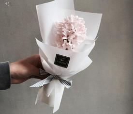 розовый гиацинт в подарок