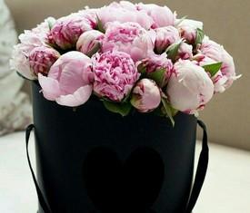 19 розовых пионов в подарочной шляпной коробке