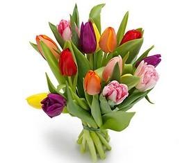 букет из 11 разноцветных тюльпанов микс на 8 марта