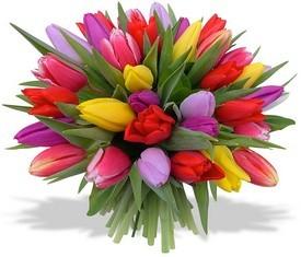букет из 25 разноцветных тюльпанов микс на 8 марта