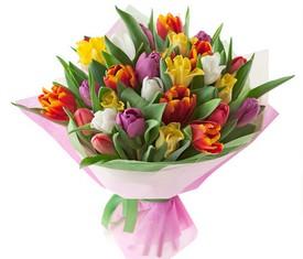 Букет 23 разноцветных тюльпана на 8 марта