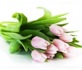букет из 7 розовых тюльпанов