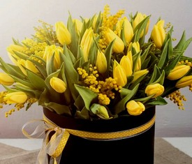 желтые тюльпаны и мимоза в коробке