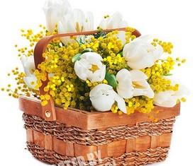 корзина из цветов мимозы и тюльпанов