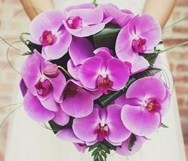 Букет невесты из розовой орхидеи фаленопсис