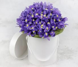 цветы ирисы в коробке