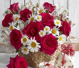 тюльпаны цветы фото черные