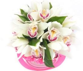 цветы орхидеи в шляпной коробке