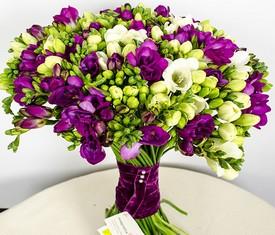 букет из 101 цветка фрезии