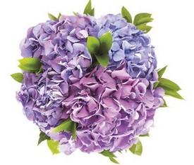 букет из 5 цветов гортензии