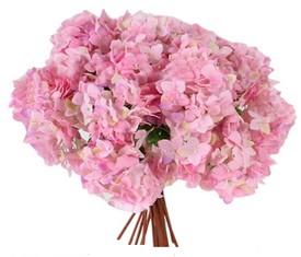 букет из 9 цветов розовых гортензий
