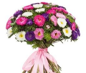 букет из цветов астры на 1 сентября в подарок учителю