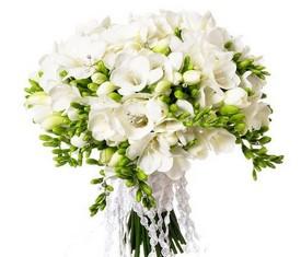 букет невесты из белой фрезии