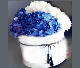цветы белая и синяя гортензия в шляпной коробке