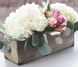 Гортензия и розы в кашпо