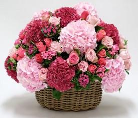 корзина из цветов розовой гортензии
