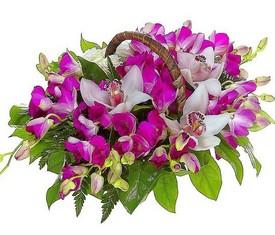 корзина Орхидеи Дендробиум и Цимбидиум