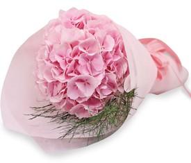 букет из цветов розовой гортензии