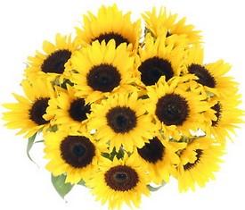 букет из цветов подсолнухов купить