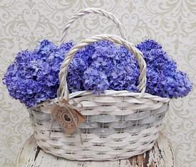 корзина из 25 цветов синих гиацинтов