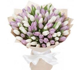 букет из 99 цветов белых и розовых тюльпанов