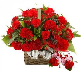 корзина из 25 красной гвоздики и 10 красных роз