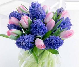 букет из синих цветов гиацинтов и тюльпанов