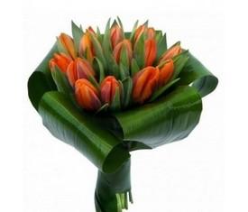 15 тюльпанов и аспидистра
