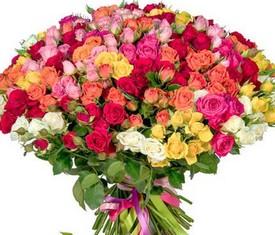 75 разноцветных кустовых роз купить