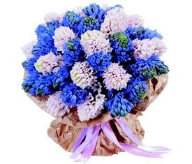 45 розовых и голубых гиацинтов