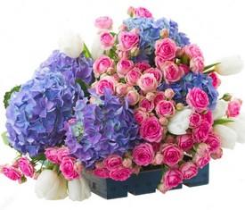 синие гортензии, белые тюльпаны, розовые кустовые розы