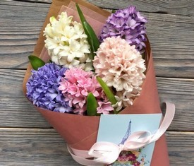 5 цветов гиацинтов упаковка крафт
