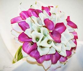 букет из 75 белых и розовых калл