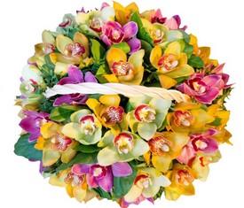 корзина из разноцветных орхидеи микс купить