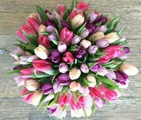 букет из 75 тюльпанов микс