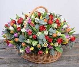 корзина из 101 тюльпана и эвкалипта