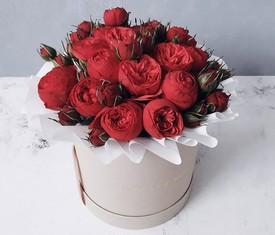 красные пионовидные розы в коробке