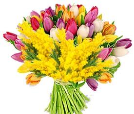 букет из мимозы и разноцветных тюльпанов купить в москве мимозу
