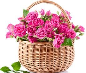 яркие розовые, малиновые кустовые розы в корзиночке с доставкой