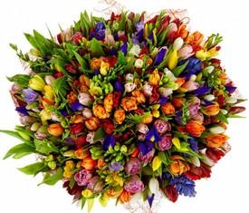 букет из тюльпанов ирисов и фрезии с доставкой