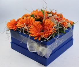 9 гербер в коробке в подарок