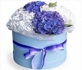 5 цветков гортензии в шляпной коробке