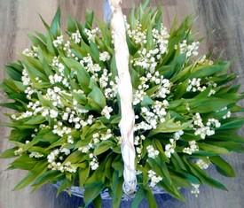 75 цветов ландышей в корзине