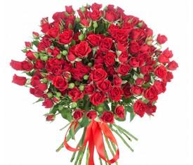 букет из 19 цветов алых кустовых роз