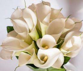 букет из цветов высоких белых калл